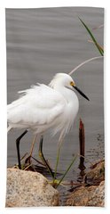 Snowy Egret Bath Towel by Kay Lovingood