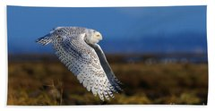 Snowy Owl 1b Bath Towel by Sharon Talson