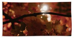Hand Towel featuring the photograph Spotlight On Fall by Cheryl Baxter