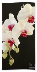 Spray Of White Orchids Hand Towel
