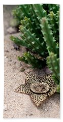 Hand Towel featuring the photograph Stapelia Variegata by Laura Melis