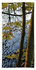 Bath Towel featuring the photograph Still Waters In The Fall by Andy Prendy