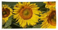 Bath Towel featuring the photograph Sun Flower by William Norton