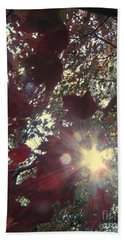 Hand Towel featuring the photograph Sun Shine Through by Donna Brown