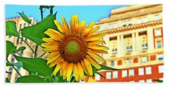 Hand Towel featuring the photograph Sunflower In The City by Alice Gipson
