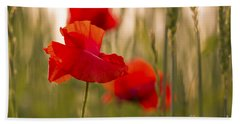 Hand Towel featuring the photograph Sunset Poppies. by Clare Bambers