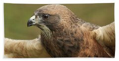 Hand Towel featuring the photograph Swainson's Hawk by Doug Herr