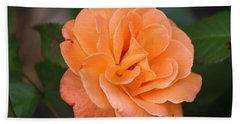 Tangerine Rose Bath Towel by Donna  Smith