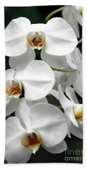 The Beauty Of Orchids  Bath Towel