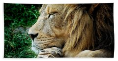 The Lions Sleeps Bath Towel