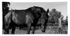 Hand Towel featuring the photograph The Stallion by Davandra Cribbie