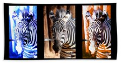 Bath Towel featuring the photograph The Three Zebras Black Borders by Rebecca Margraf