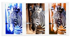Bath Towel featuring the photograph The Three Zebras White Borders by Rebecca Margraf