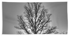 Through The Boughs Bw Bath Towel by Dan Stone