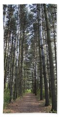 Hand Towel featuring the photograph Through The Woods by Jeannette Hunt