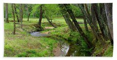 Hand Towel featuring the photograph Toms Creek In Early Spring by Kathryn Meyer