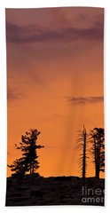 Trees At Sunset Bath Towel