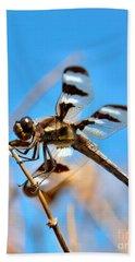 Twelve-spotted Skimmer Dragonfly 7 Bath Towel