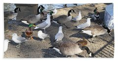 Urban Birds Hand Towel