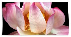 Water Lily On Black Hand Towel