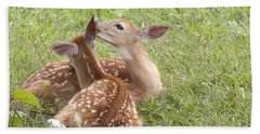 Hand Towel featuring the photograph Whispering Fawns by Jeannette Hunt