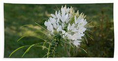 White Cleome Bath Towel by Michael Bessler