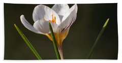 White Crocus Bath Towel