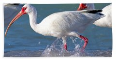 White Ibis On The Shore Hand Towel