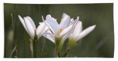 White Lily - Symbol Of Purity Hand Towel by Ramabhadran Thirupattur