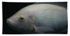 White Tilapia With Yellow Eyes Hand Towel