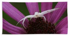 Bath Towel featuring the photograph Whitebanded Crab Spider On Tennessee Coneflower by Daniel Reed