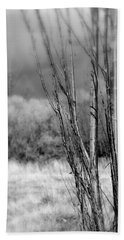 Bath Towel featuring the photograph Winters Branch by Kathleen Grace