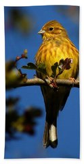 Yellowhammer Bath Towel