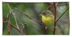 Yellowthroated Warbler Hand Towel