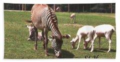Zebra's Grazing Hand Towel