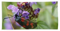 Burnet Moth Hand Towel by Martina Fagan