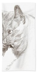 Cat And Chickadee Hand Towel