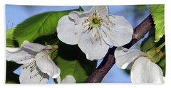 Bath Towel featuring the photograph  Tree Blossoms by Elvira Ladocki