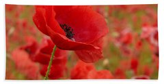 Red Poppies 3 Bath Towel