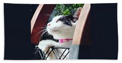 Koneko Means A Kitten Hand Towel
