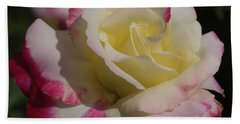 Bath Towel featuring the photograph A Rose by Cathy Donohoue