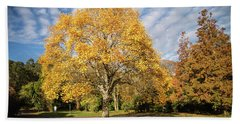 A Touch Of Autumn  Hand Towel by Martina Fagan