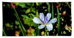 Bath Towel featuring the photograph African Iris by Chris Coffee