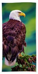 Alaska Bald Eagle Hand Towel
