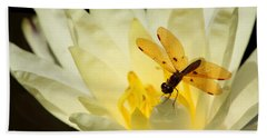 Amber Dragonfly Dancer 2 Hand Towel