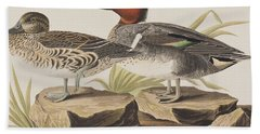 American Green-winged Teal Hand Towel