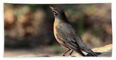 American Robin On Rock Bath Towel by Sheila Brown