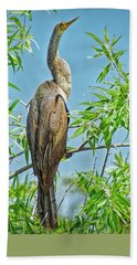 Anhinga Branching Out Bath Towel by Judy Kay