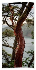 Arbutus Tree Hand Towel