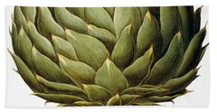 Artichoke, 1613 Bath Towel